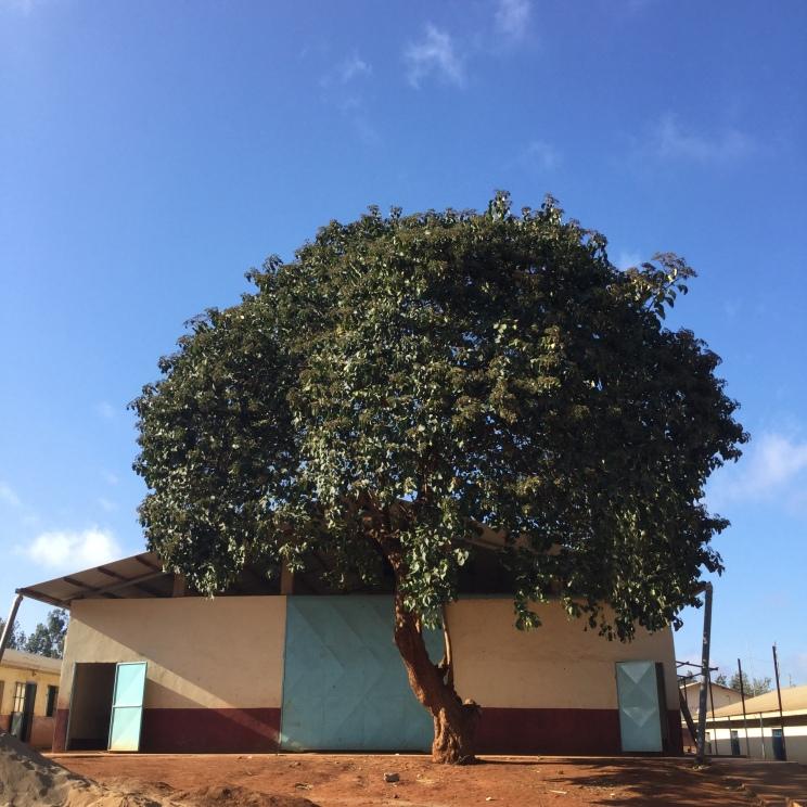 Kenya 2015 177